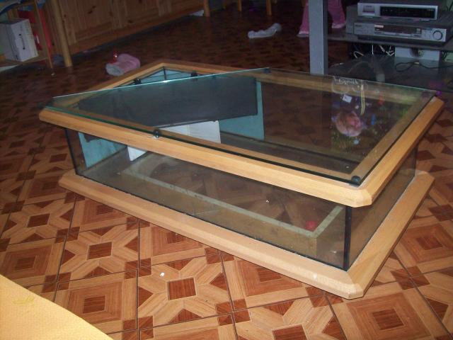table basse aquarium occasion mobilier design d coration d 39 int rieur. Black Bedroom Furniture Sets. Home Design Ideas