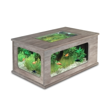 Table basse aquarium beton cire