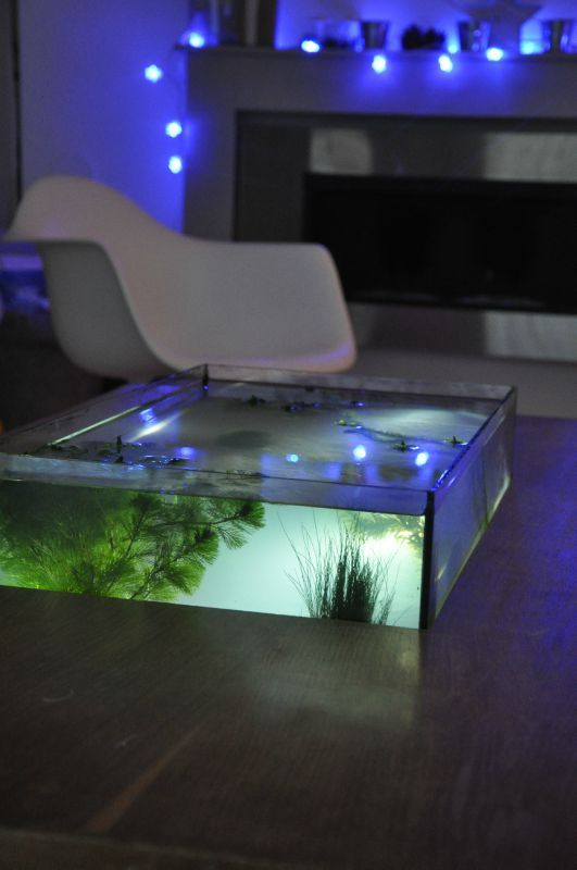 aquarium table basse de salon aquatlantis mobilier design d coration d 39 int rieur. Black Bedroom Furniture Sets. Home Design Ideas