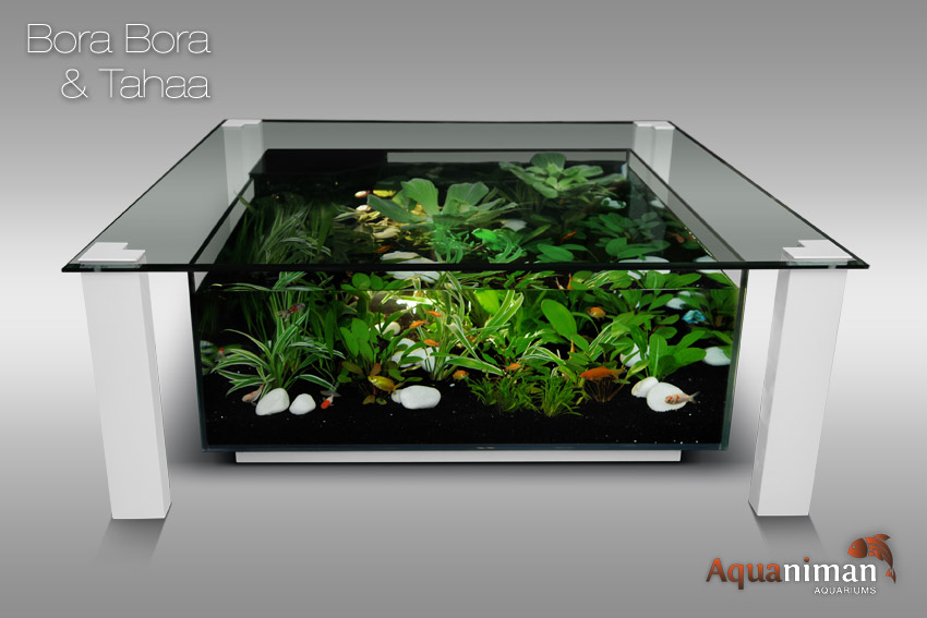 table basse aquarium belgique mobilier design. Black Bedroom Furniture Sets. Home Design Ideas