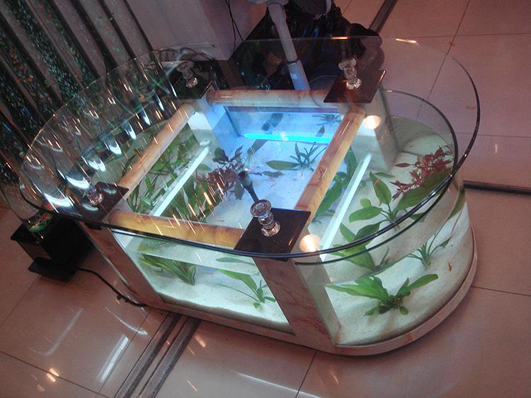 Table basse aquarium poisson d'or