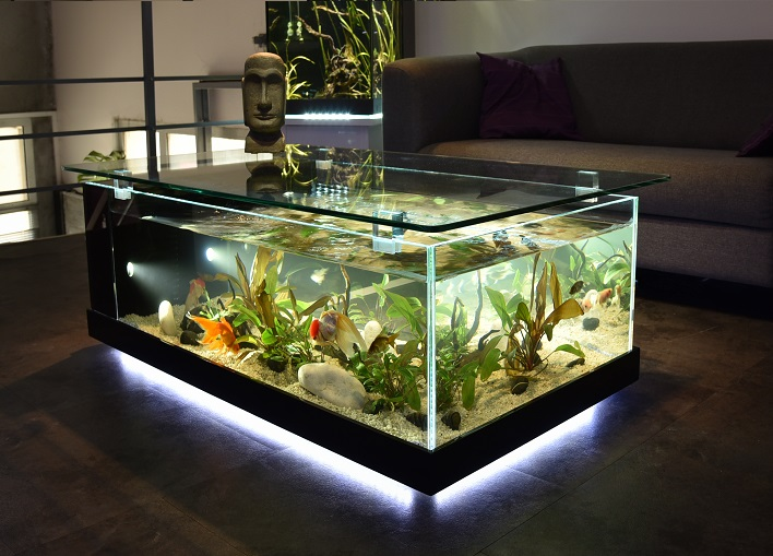 table basse aquarium fait maison mobilier design d coration d 39 int rieur. Black Bedroom Furniture Sets. Home Design Ideas