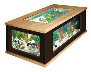 Table basse en verre avec aquarium