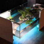 Table basse salon aquarium