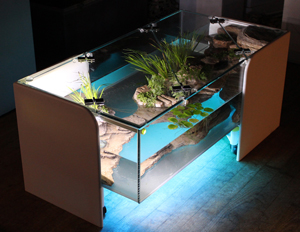Table basse salon aquarium