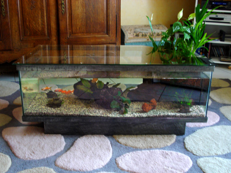Table basse aquarium marin mobilier design d coration d 39 int rieur - Table basse aquarium design ...