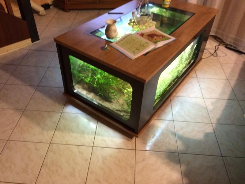 Avis sur table basse aquarium mobilier design d coration d 39 int rieur - Table basse aquarium jardiland ...