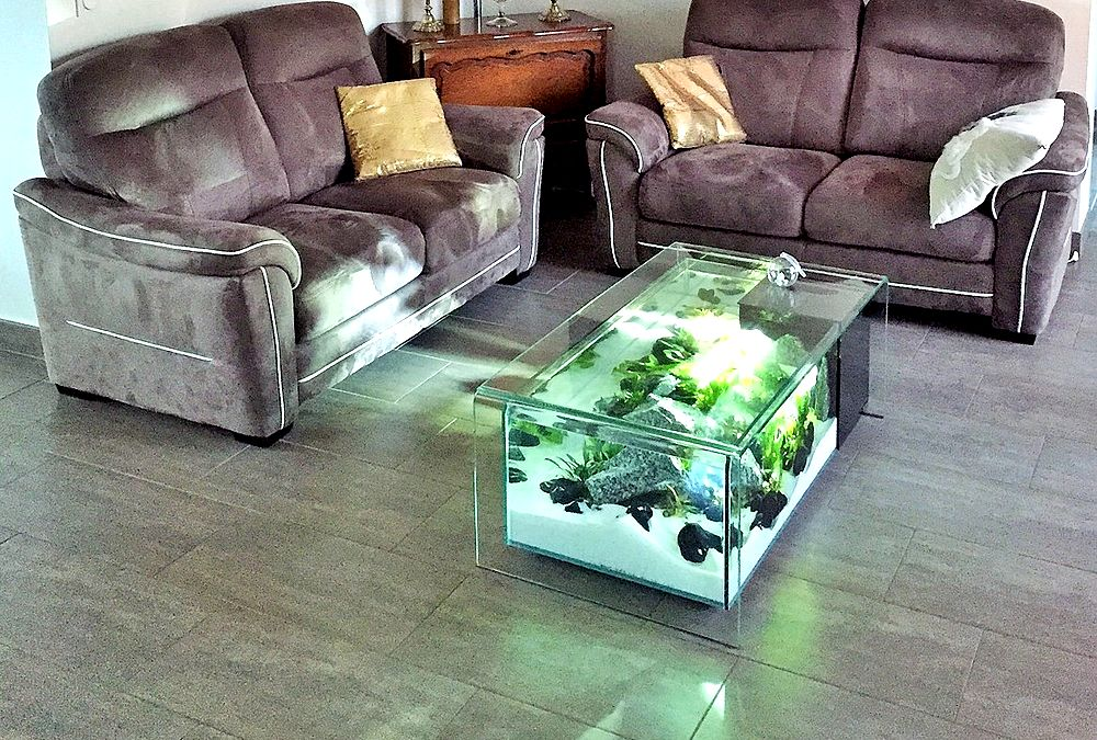 Table basse aquarium belgique mobilier design d coration d 39 int rieur - Aquarium table basse de salon ...