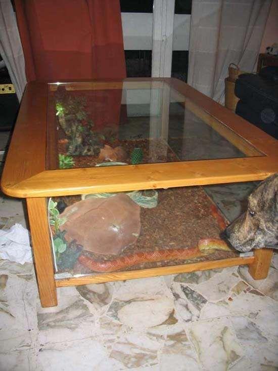 Table basse aquarium forum