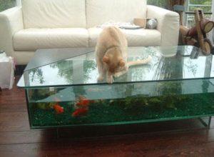 Table basse salon aquarium - Mobilier design, décoration d\'intérieur