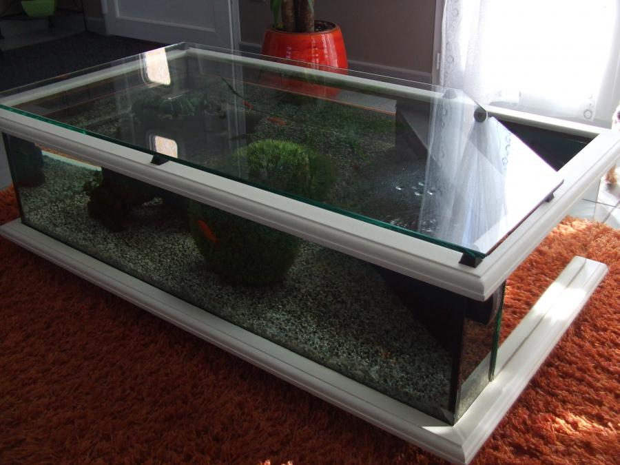 Table basse aquarium bois mobilier design d coration d 39 int rieur - Table basse aquarium design ...