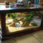 Table basse terrarium