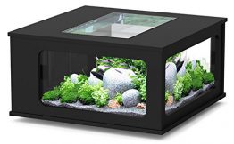 Ou trouver une table basse aquarium
