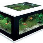 Aquarium table basse de salon aquatlantis