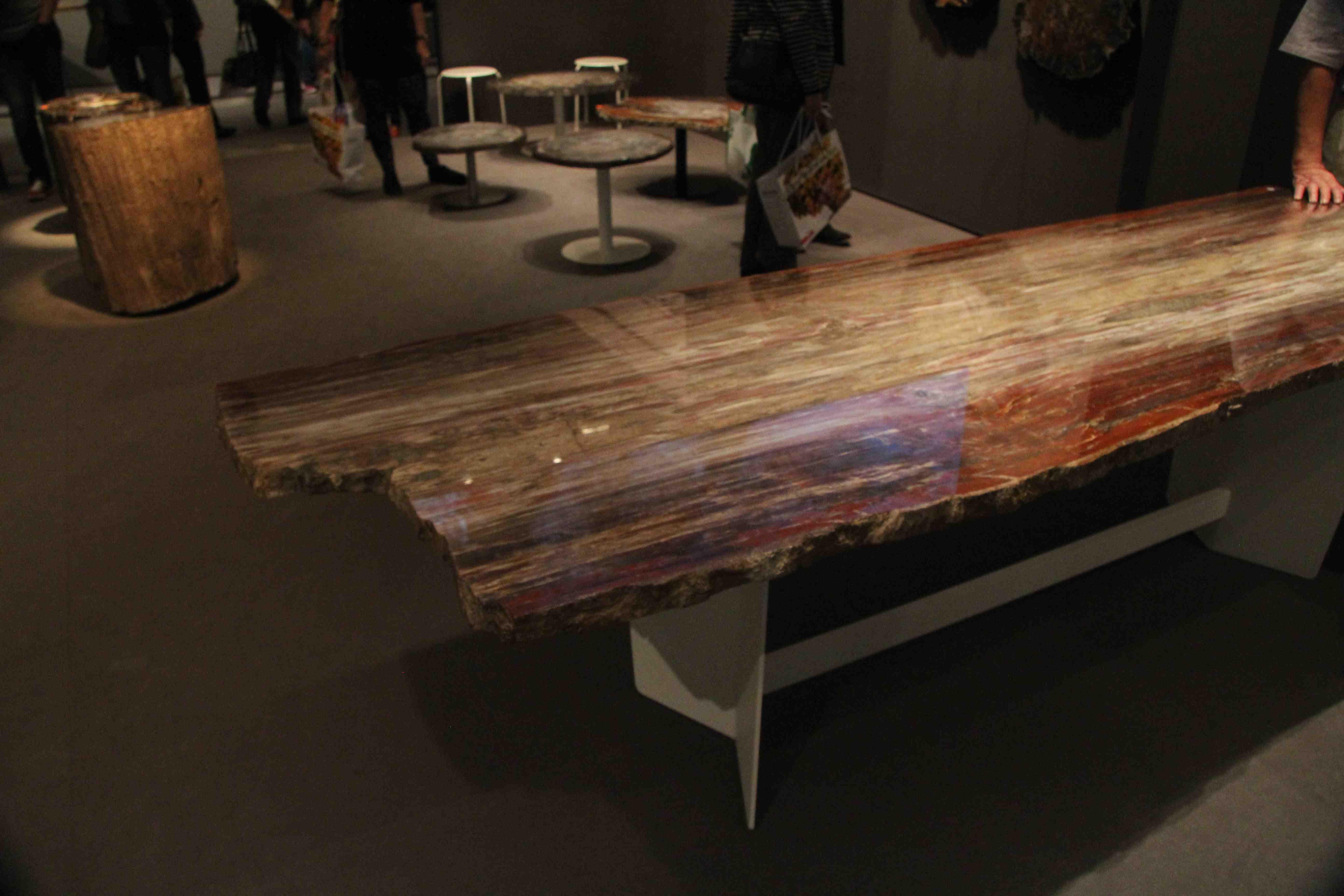 Table basse en bois fossilisé