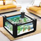 Nettoyage aquarium table basse