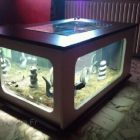 Table basse aquarium noir et blanc