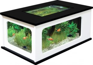 Table basse aquarium le bon coin