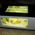 Table basse aquarium aquatlantis