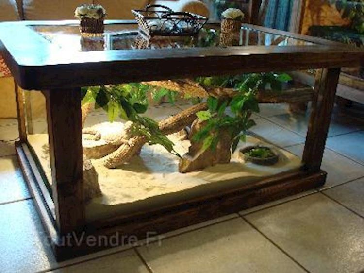 Table basse vivarium pas cher