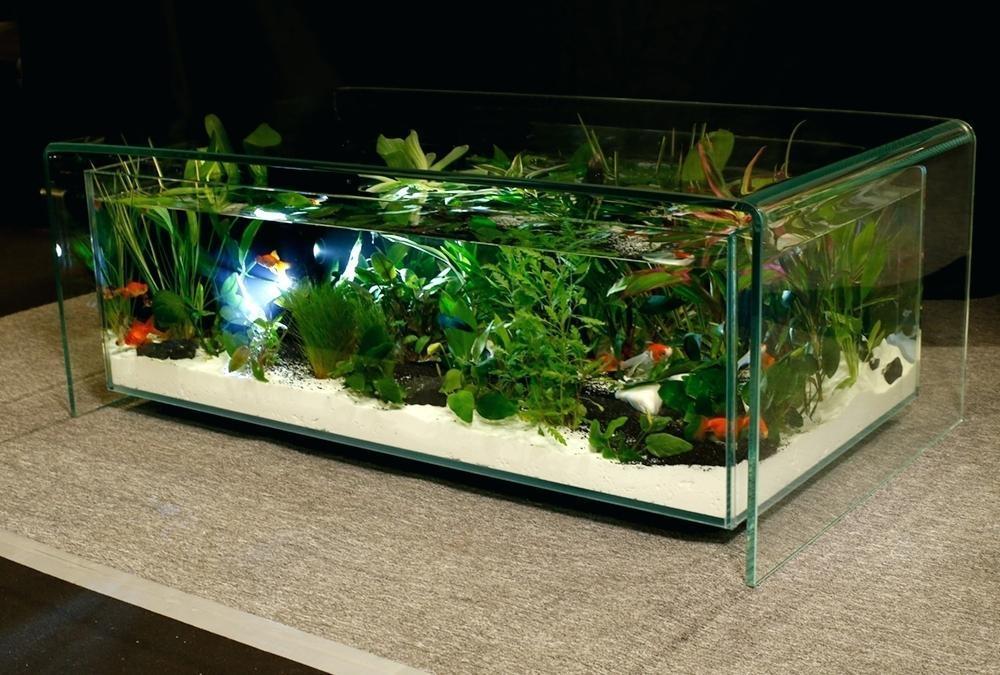 Achat table basse aquarium occasion