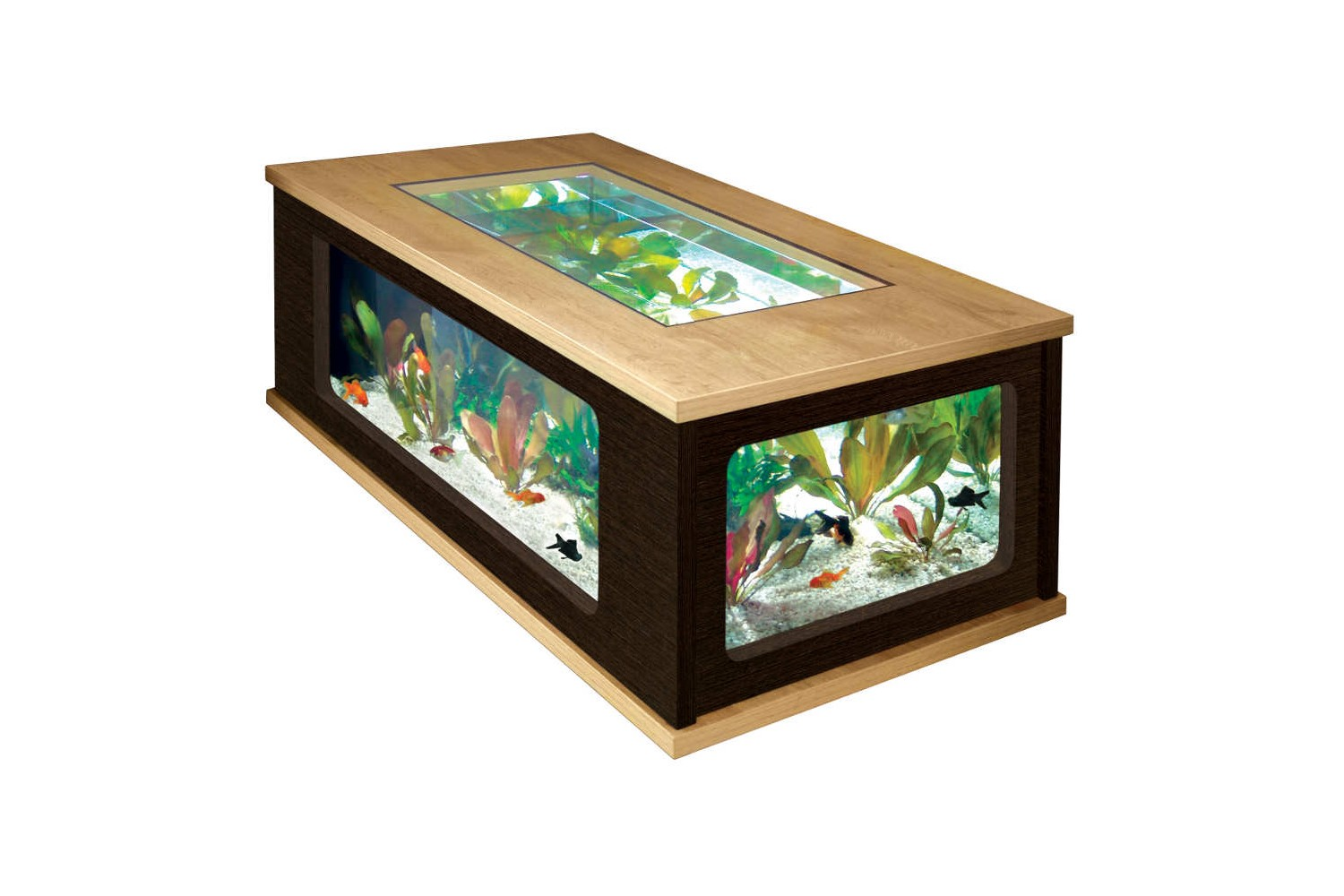 Table basse aquarium diy