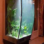 Table basse aquarium d'occasion
