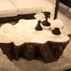 Table basse bois tronc arbre